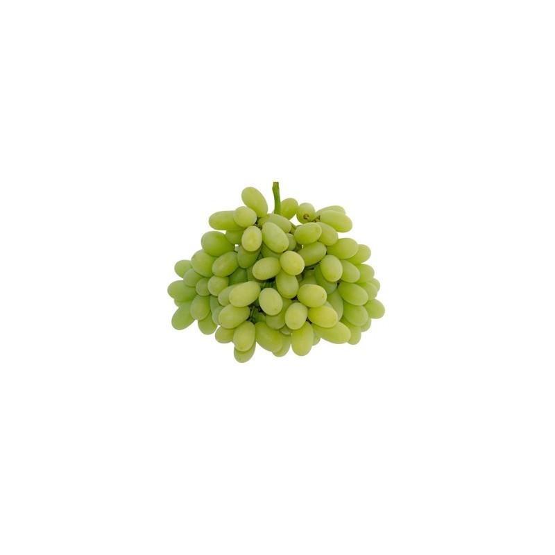 Uva Thompson Seedless