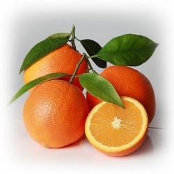 Arancio Navellina