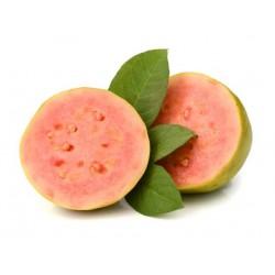 Guava rosa (Guayaba)